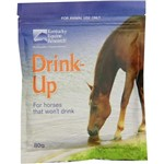 Drink-Up 80g Sachet Kentucky Equine Research