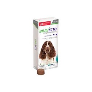 Bravecto for Medium Dogs 10 - 20kg