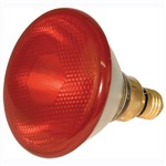 Heat Lamp Infrared Red 100w